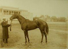 Канаро 1908 г.р.