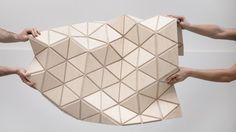 WoodSkin aims to bridge the gap between virtual design and real construction By Donna Taylor June 5, 2013 The current WoodSkin product is a sandwich of plywood triangular tiles with a textile mesh...