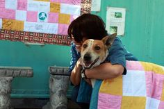 Meet Lily, a rescue dog who's story of survival will leave you captivated and motivated to take action! Lily was born in South Africa, left to raise herself and survive on her own in the streets. She often trotted around villages …