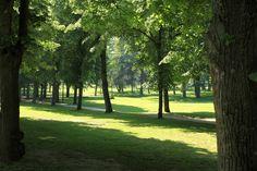 Découvrez un parc à la biodiversité débordante !