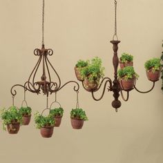 Bring ample planter space into your home's interior or exterior with the Gerson International Chandelier Hanging Planters - Set of 2 . Two chandelier. Hanging Plants Outdoor, Metal Hanging Planters, Diy Planters, Garden Planters, Hanging Baskets, Planter Pots, Hanging Flower Pots, Succulent Planters, Balcony Garden