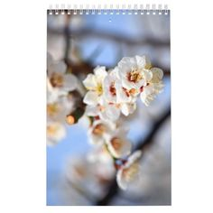 Shop Flowers and Blossoms Calendar created by GirlTravelFactor. Blossom Flower, Gifts For Family, Trees To Plant, Blossoms, Holiday Gifts, Calendar, Create, Flowers, Sunshine