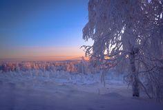 Maija Savolainen  LUONTOKUVAUS Abstract Photography, Finland, Snow, Outdoor, Outdoors, Outdoor Games, The Great Outdoors, Eyes, Let It Snow