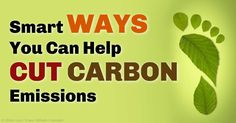 By doing away with wasteful lifestyles and business practices and greatly enhancing resource efficiency, carbon emissions could be cut by 70 percent. http://articles.mercola.com/sites/articles/archive/2015/04/28/carbon-emissions.aspx