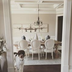 Hi pretty puppy! Your white dining room is beautiful. #mypotterybarn