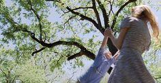 The Tree of Life, really beautiful movie