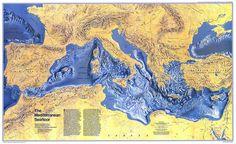Mediterranean Seafloor (1982)
