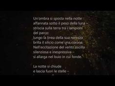 L'ombra, di Roberto Maggiani [Poesia] :: LaRecherche.it
