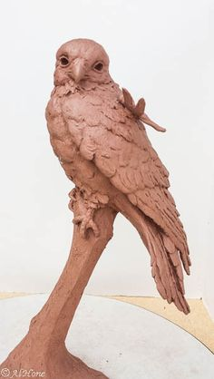 Newest bird sculptures, kestrel, dragonfly
