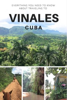Traveling to Vinales, Cuba. Horseback riding, tobacco farms, farm to table restaurants and more!