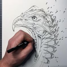 Jayn (His full name is Björn Lindner) Graffiti Artist and Graphic Designer based in Lüneburg, Germany. For more View Website.    #sketch #drawings #sketchart #animaldrawings #animalart #sketches #animal #animals
