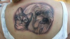 kočky a psy - Hledat Googlem