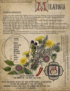 The First Chakra (Muladhara / Base/ Root Chakra Meditation, Chakra Healing, Wiccan, Witchcraft, Ayurveda, Kundalini, Second Chakra, Reiki, Chakra System