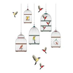 Cages Window - Home Décor Line Wall Decals
