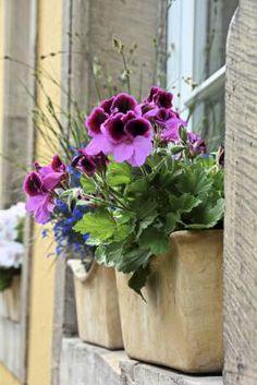 Como construir uma jardineira de janela | #decoracao #flores