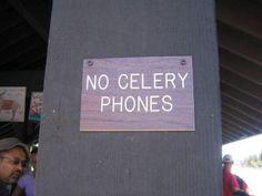 celery+dpf.jpg (600×450)