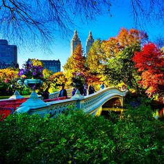 Fall in Central Park. Autumn In New York, Nyc Fall, New York City Central Park, Empire State Of Mind, High Line, I Love Ny, Nyc Photographers, City That Never Sleeps, Coney Island