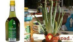 To je nápad! Beauty Detox, Medicinal Herbs, Kuroko, Aloe Vera, Life Is Good, Projects To Try, Bottle, Health, Plants