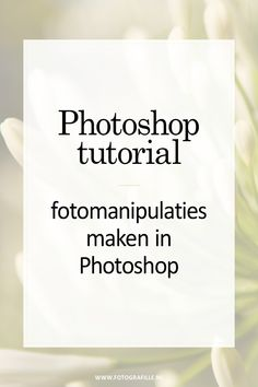 tutorial - double exposure effect in Photoshop - Fotografille Dicas Do Photoshop, Photoshop Fails, Cool Photoshop, Photoshop Logo, Photoshop Design, Dslr Photography Tips, Photoshop Photography, Creative Photography, Double Exposure Photography Tutorial