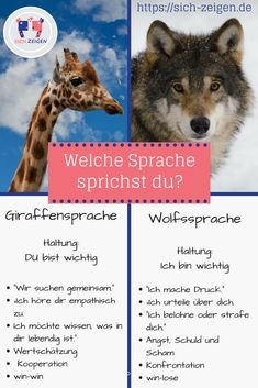 Die Wolfssprache entspricht der Art und Weise, wie wir es (leider) gewohnt sind,… The wolf language corresponds to the way we (unfortunately) are accustomed to speaking. The giraffe language is the empathic counterpart to it. Nonviolent Communication, Clear Communication, Hack My Life, Psychology Quotes, Social Media Site, Exercise For Kids, Science, Denial, Positive Life