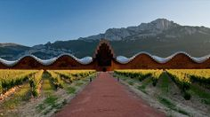 Ysios Winery. Enjoy a different adventure: Go on the steps of El Cid into the heart of old Spain, walk with the St James's way pilgrims ...