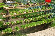 This wooden vertical garden resembles the previous teak-style wooden planters we Gutter Garden, Wooden Planters, Love Garden, Small Garden Design, Patio Design, Garden Trellis, Garden Spaces, Small Gardens, Garden Planning