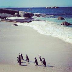 Die 5 schönsten Strände Südafrikas