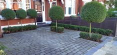 Front garden driveway - only for the idea of growing trees/box hedges in the gaps