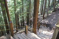 The Grouse Grind, Mother Nature's Staircase - My Destination British Columbia Grouse, North Vancouver, Vacation Home Rentals, Online Travel, Travel Articles, Travel Stuff, Train Travel, Staircases, Business Travel