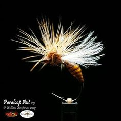 Antsare catchy patterns. This is currently my favorite. . #flyfishing #flytying #flugbindning #flugfiske #fliegenbinden #fliegenfischen #tyingflies #troutflies #flyfish #flyfishingjunkie #flyfishingnation #flydressing #flytyingaddict #flytyingporn #perhokalastus #flylords #troutfood #troutbum #mayflymafia #catchandrelease #pescamosca #motajedemosca #torrfluga #dryfly #dryflyfishing #grayling #trout #whitingfarms #dryordie #フライフィッシング