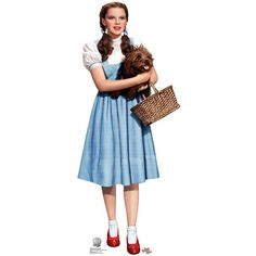 womens dorothy and toto standup multi colored 41 liked on polyvore - Dorothy Halloween Costume Women