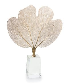 A lovely laser cut brass sea fan is suspended on a crystal clear base.
