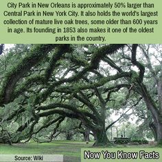 See more on our page www.nowyouknowfacts.com
