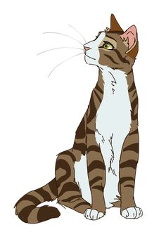 Warrior Cats Designs : Photo