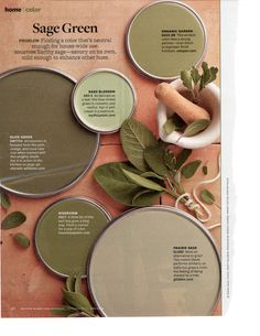 """Those are pretty October 2013 - """"Sage Green"""" Interior Paint Colors, Paint Colors For Home, Room Colors, House Colors, Colours, Farmhouse Paint Colors, Paint Color Schemes, Colorful Garden, Better Homes And Gardens"""