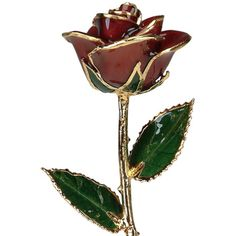 A Burgundy 12Inch 24kt Gold Trimmed Rose Send a spectacular burgundy 12inch long stemmed 24kt gold trimmed rose http://www.MightGet.com/january-2017-12/a-burgundy-12inch-24kt-gold-trimmed-rose.asp