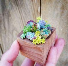 #pottery #planters #pots #homeandgarden #decor #potcontainers #gardencontainers #gardening #homedecor #yardpots #flowerpots
