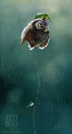 """A character design of an owl in the rain, """"Don't Worry, I Have It Covered"""" #digital-art and #illustration by Therese Larsson via Behance http://dizy.be/4300c2"""