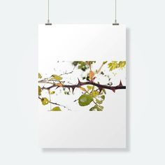 Stampa invernale nature inspirational wall art rose snow