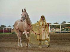 Oman Royale Cavalry Festival 2014
