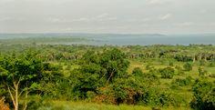 Uganda, overlooking Lake Victoria