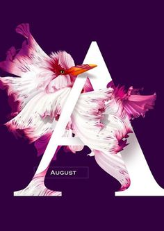August ~ Flying Flowers 2016 on Behance Layout Design, Graphisches Design, Nail Design, Graphic Design Posters, Graphic Design Typography, Branding Design, Typography Inspiration, Graphic Design Inspiration, Creative Logo