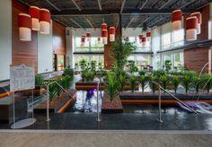 Le Noah Spa Lac Champlain, Stairs, Plants, Design, Image, Home Decor, Stairway, Decoration Home, Room Decor