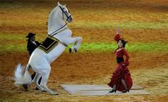 flamenco dancing with horse