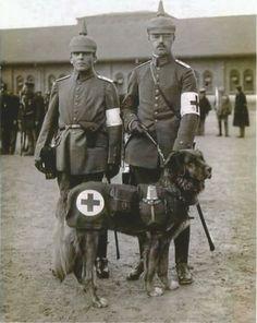 German-WW-I-034-5-x-7-Inch-034-Photo-Medic-Soldiers-amp-Dog