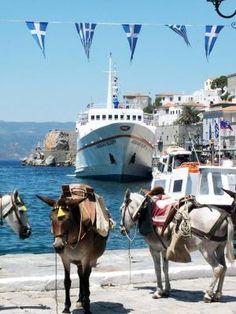 Hydra , Greece by vivian
