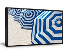Bright blue and white striped beach umbrellas stand in a graphic row on the sand