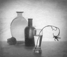 *** by Ludmila Prokofeva Hotshoe.org