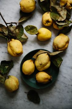 quince | apt 2b baking co