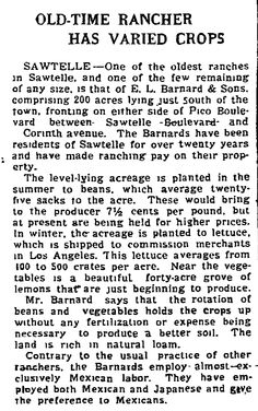 This clip is from the L.A. Times Jan 7, 1923, Farm and Tractor section. The Barnard Ranch was between Sawtelle Bl. And Corinth avenue fronting either side of Pico Blvd and the Barnards resided in Sawtelle since around 1900. Contrary to the usual practice of other ranchers, the Barnards employed almost exclusively Mexican Labor. They employed both Mexican and Japanese and gave the preference to Mexicans.